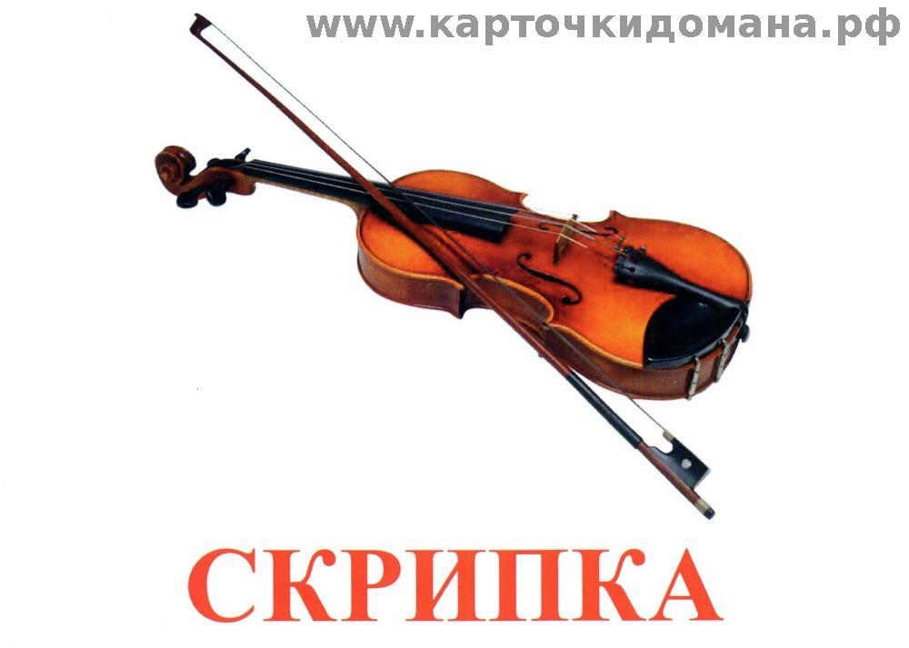 флейта музыкальный инструмент фото